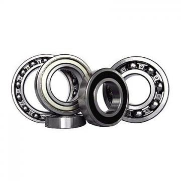 PAF10090-P10 Flanged Bearing Bush